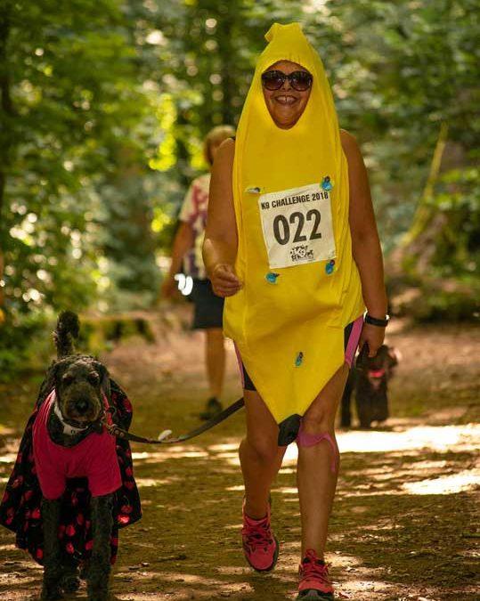 Bananas K9 2018
